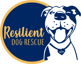 Resilient Dog Rescue